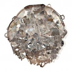 Jaydan Moore, Platter