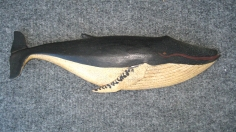 Carved and painted Humpback Whale by Clark Voorhees