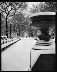 Mark Seliger- Central Park