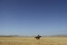 William Albert Allard- Lone Rider