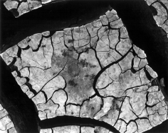 Brett Weston - Mud Cracks