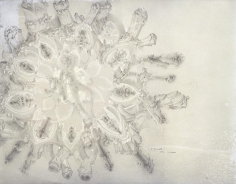 Le Mirroir- Silver point on paper 1982