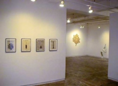 Exhibition Installation