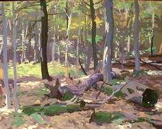 Willard Midgette Woods, Skowhegan, Maine #3, 1977