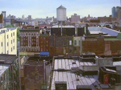 Andrew Lenaghan View from Adam's Roof over East Canal Street