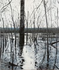 Brophy - Overflow Lake II