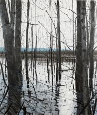 Brophy - Overflow Lake I