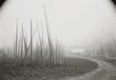 Kenro Izu - Dochu-La #129, Bhutan, 2003 - Howard Greenberg Gallery