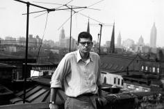 Allen Ginsberg - Ginsberg - Howard Greenberg Gallery - 2011