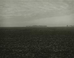Rhondal McKinney - 3970, 2012 - Howard Greenberg Gallery