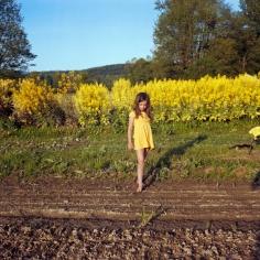 Anna Mia Davidson - Human Nature - Howard Greenberg Gallery - 2014