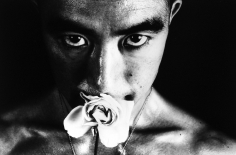 Eikoh Hosoe - Ordeal by Roses (Barakei) #32, 1961 - Howard Greenberg Gallery