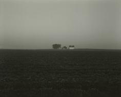 Rhondal McKinney - 3856, 2012 - Howard Greenberg Gallery
