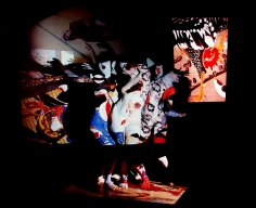 Photo Libris: Selected Books and Portfolios 2006 Howard Greenberg Gallery