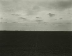 Rhondal McKinney - 2180, 1993 - Howard Greenberg Gallery