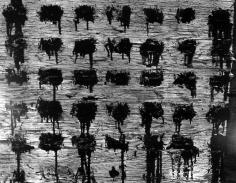 Howard Greenberg Gallery 2017 aaron siskind