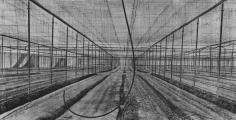 Jungjin Lee - Unnamed Road 002, 2011  - Howard Greenberg Gallery