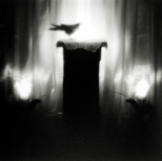 Keith Carter - Ofrenda, 1999 - Howard Greenberg Gallery
