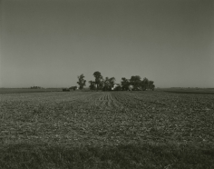 Rhondal McKinney - 3758, 2010 - Howard Greenberg Gallery
