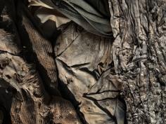David Zimmerman, Last Refuge, Untitled (last refuge 97), 2011, Sous Les Etoiles Gallery