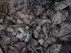 David Zimmerman, Last Refuge, Untitled (last refuge 277), 2011, Sous Les Etoiles Gallery