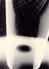 Richard Caldicott, Photogram, Recent Work 2010-2013, Sous Les Etoiles Gallery