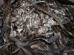 David Zimmerman, Last Refuge, Untitled (last refuge 13), 2011, Sous Les Etoiles Gallery