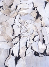 William Daniels Goya, 2006