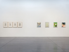 Prints and Editions  Installation view  January 25 – February 23, 2019  Luhring Augustine, New York  Pictured from left: Christopher Wool, Sanya Kantarovsky