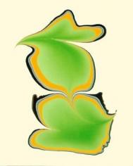 Philip Taaffe Calligram (Yellow/Green), 2002