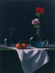 Still Life with Anemone