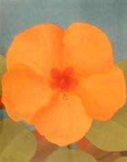 Mark Adams Orange Hibiscus, 1996
