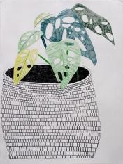 Jonas Wood Pot with Plant, 2009