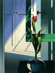 Still Life with Pink Tulip
