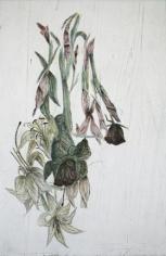 Kiki Smith Touch (lillies)
