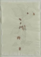 Kiki Smith Mulberry Drawing (83)