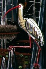 David Bates White Ibis