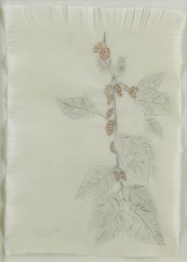 Kiki Smith Mulberry Drawing (85)