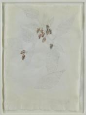 Kiki Smith Mulberry Drawing (87)
