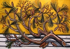 Pine Branch II