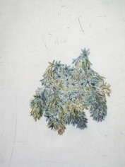 Kiki Smith Touch (hyacinth)