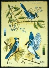 Blue Jays 2004
