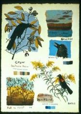 Black Birds 2004
