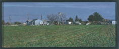 Farm Near Elk Grove