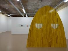 Elad Lassry, Installation view: Sensory Spaces 3, Museum Boijmans Van Beuningen, Rotterdam, 2014