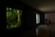 Dominique Gonzalez-Foerster, Installation view: chronotopes & dioramas, Dia Art Foundation, New York, 2009