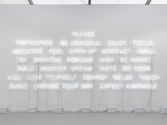 Jeppe Hein, Please Participate, 2015