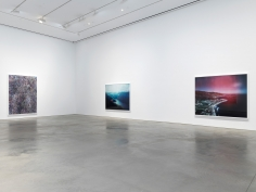 Installation view: Florian Maier-Aichen, 303 Gallery, New York, 2017