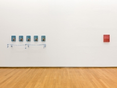Elad Lassry, Installation view: Padiglione d'Arte Contemporanea, Milan, 2012