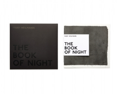 Mary Heilmann, The Book of Night, 2016